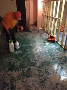 Commercial Restoration Job